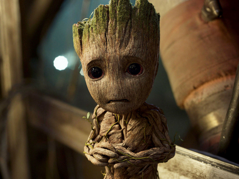 groot triste