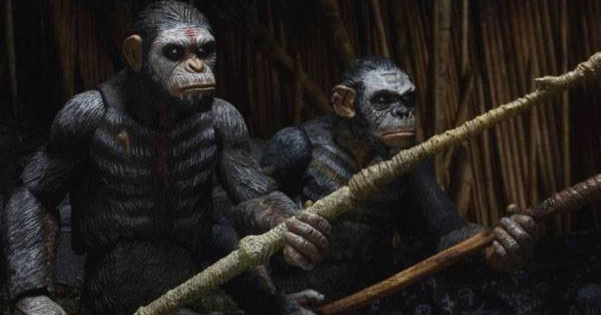 Planeta dos Macacos - O Confronto ganha prelúdio na forma de três curtas-metragens - assista