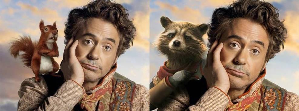 Dolittle de Robert Downey Jr. posa com Rocket Racoon em montagem do BossLogic