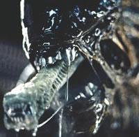 alienboca.jpg