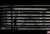Homem Formiga artes conceituais 18Mar2014 03