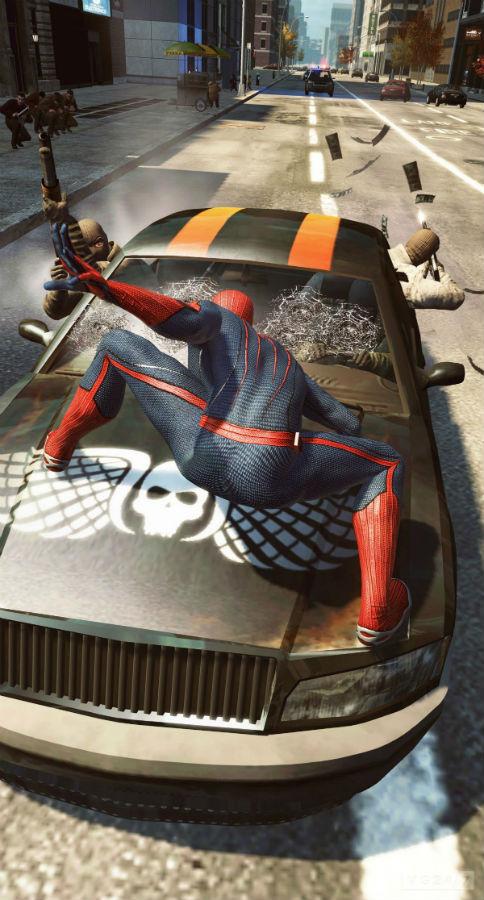 spider 6jun2012 12